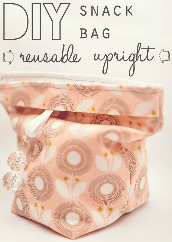 DIY snack bag reusable upright #ThisisWholesome