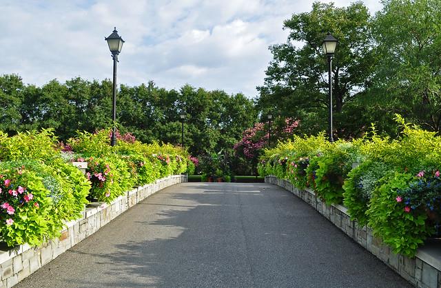 Rose Garden Bridge (1)