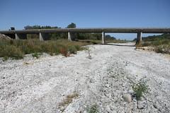 Orari River, Canterbury - Good and Bad News  (2 of 2 - Bad News)