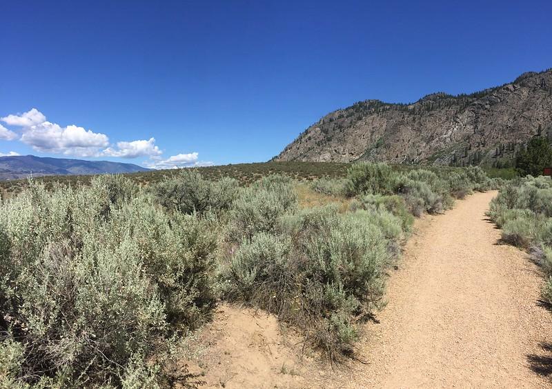 Desierto Okanagan