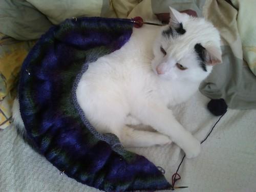 Merlin mit Jacke (Kragen)