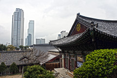Temple and the City