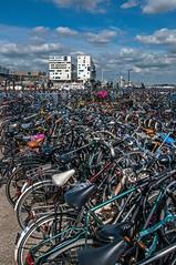 2012 09 01 New Amsterdam