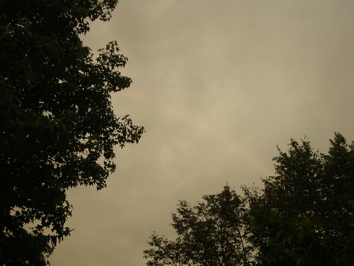 rainbow 6/23/13