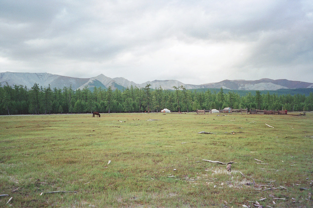 Image result for mongolia