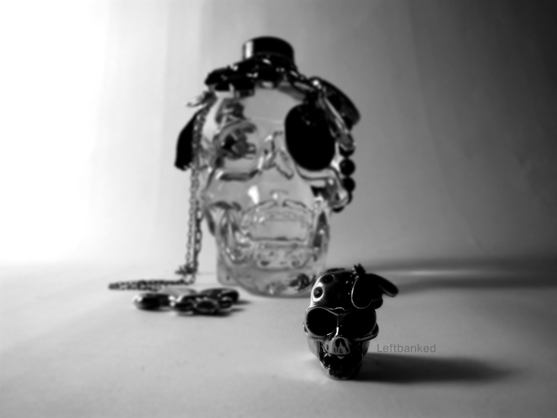 Crystal Head Vodka Alexander McQueen