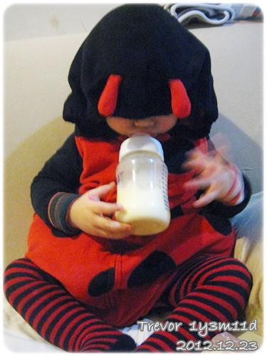 121223-小瓢蟲喝奶