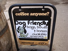 Picture of Category Dog Friendly