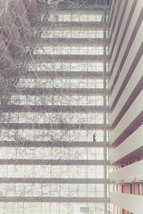 Modern building / Immeuble moderne