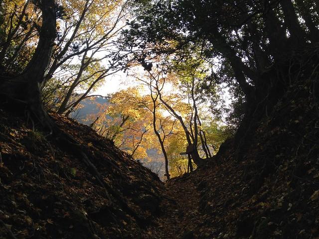 霊仙山 榑ヶ畑コース 2合目 汗拭峠