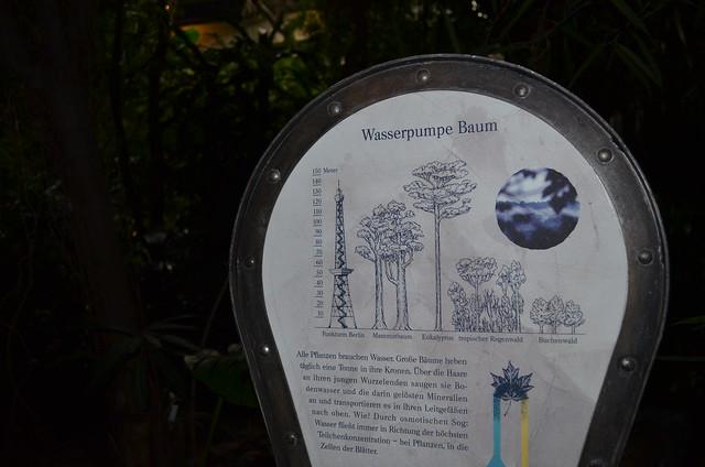 Biosphaere Potsdam Wasserpumpe Baum sign