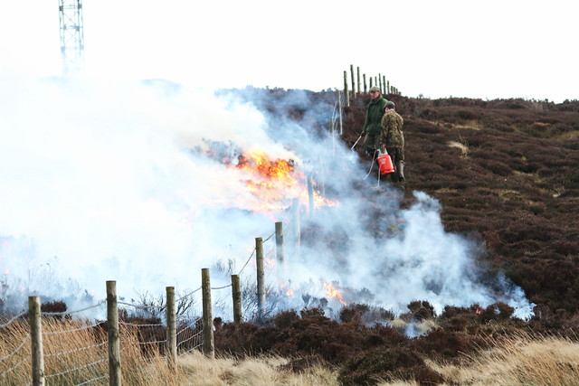 Burning the Heather for a new season, Ilkley Moor
