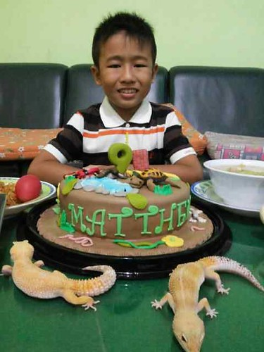 Reptile Cake for Matthew's Birthday