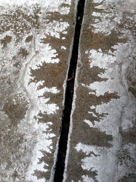 Salt Cracks