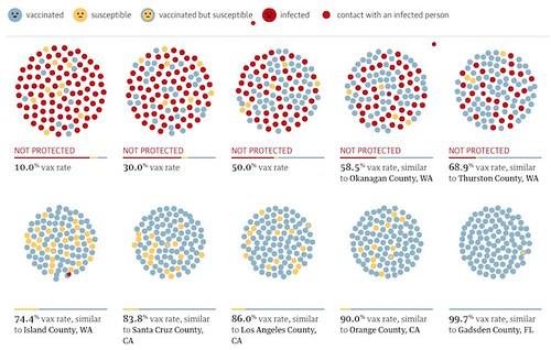 Guardian Measles Vaccine Animation