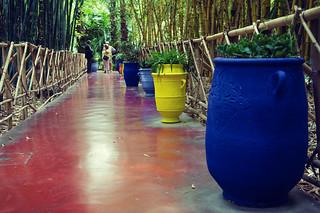 Marrakesch - Jardin Majorelle | Roland Krinner