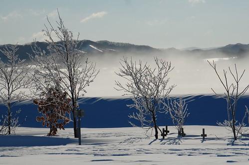The mist on rever