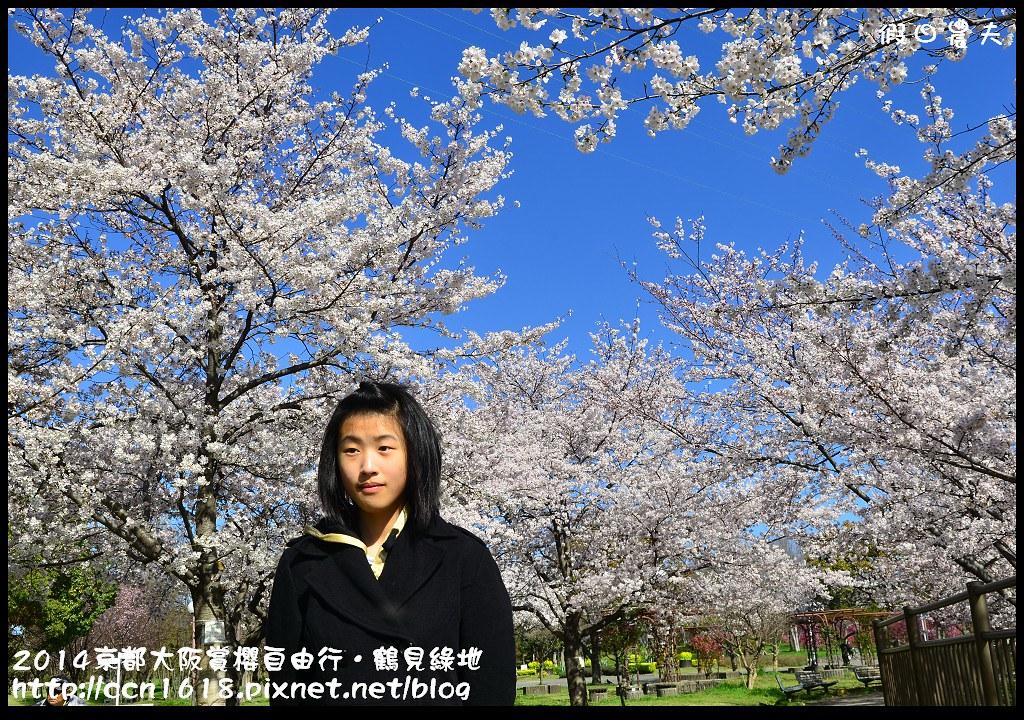 2014京都大阪賞櫻自由行.鶴見綠地DSC_1245
