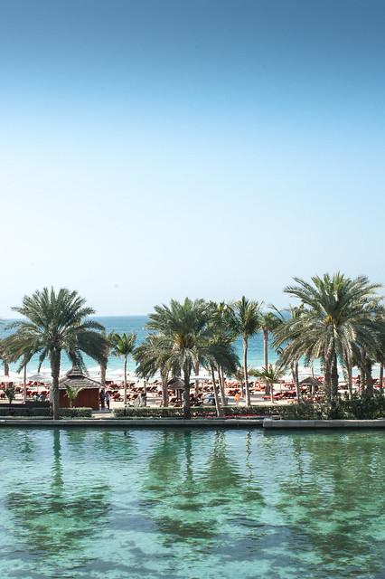Dubai15021326