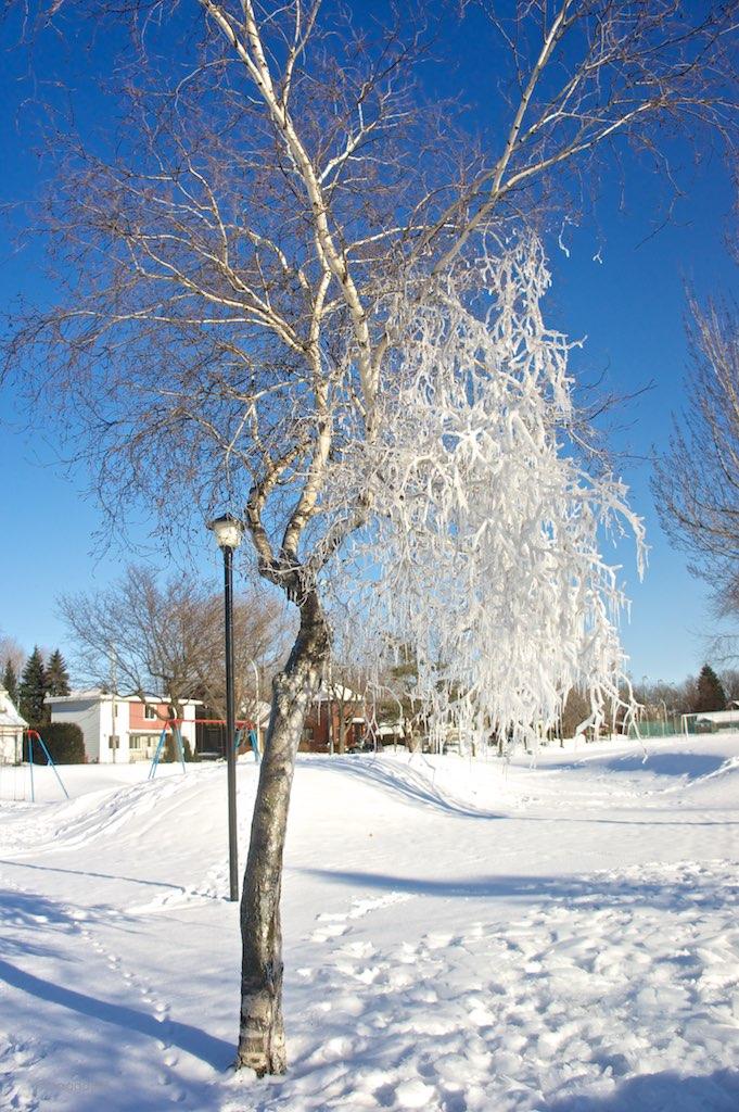 anteketborka.blogspot.com, ciel 16 d