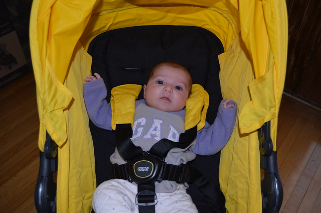 Release Infant Car Seat
