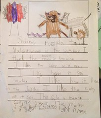 """""""Some people think that Valentines bear is the best but I think the monkey is because I like the color of it eye. I like how it goes wild. I like how it lives in the jungle. I like the color of its skin. The skin is brown. Cailynn says the monkey is the b"""