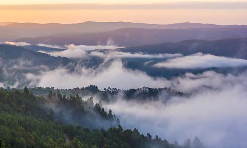 morning mountain portugal nature fog clouds forest sunrise landscape europe do central da serra portela zêzere fojo pampilhosa