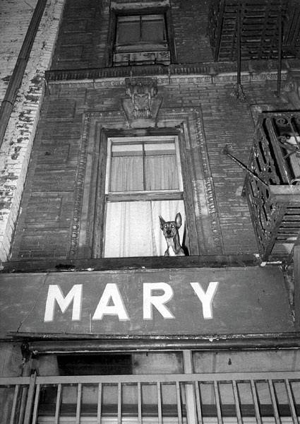 Jill Freedman, Mary, New York City, 1981