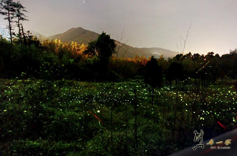 奮起湖老街|螢火蟲導覽|嘉義竹崎景點