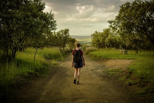 Charlotte Walking