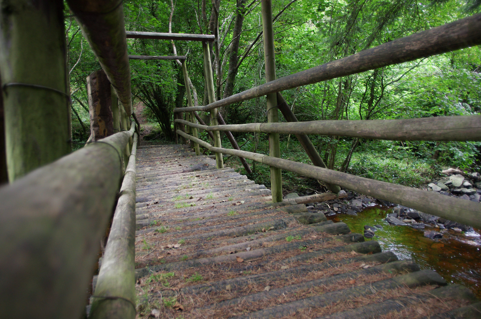 Slieve bloom mountains - the wooden bridge