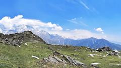 Trekking In Dhauladhars