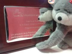 marsupial(0.0), koala(0.0), teddy bear(1.0), textile(1.0), plush(1.0), stuffed toy(1.0), toy(1.0),