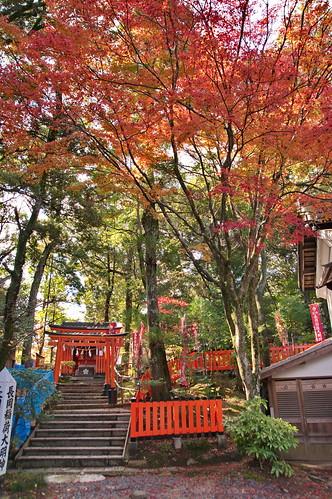 【写真】2012 紅葉 : 長岡天満宮/2020-10-09/IMGP6538