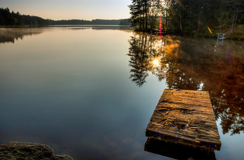 wood morning sea summer lake seascape reflection tree nature water forest landscape early stream mood sweden sony a77 sunsrise 1650 östergötlandcounty