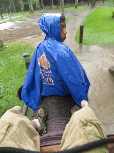 ma mahout