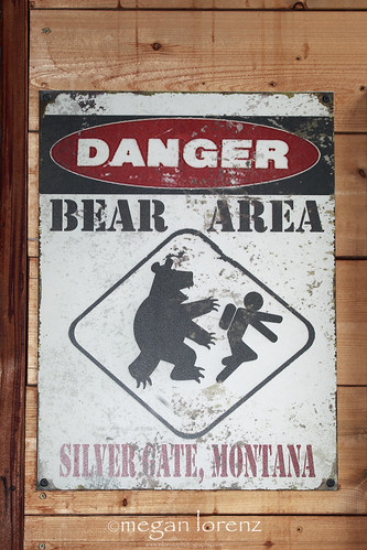 Beware Of Grizzly Bear by Megan Lorenz