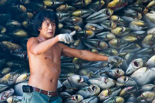 攝影師鏡頭下捕捉東港漁民的神韻。(攝影:Paul Hilton,台灣綠色和平組織提供)