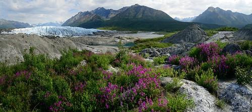 alaska landscape glacier matanuska matanuskaglacier nikond800