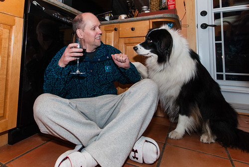 It's ok Kooper, it's not drinking alone when you have a furry friend with you - #347/365 by PJMixer