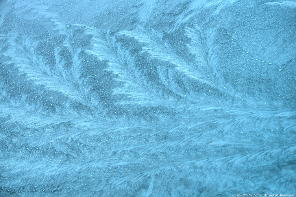 Featherd Ice Crystals
