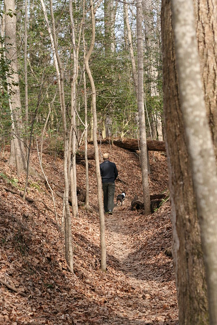 Charlie Powhite Hike Feb 2 (14)