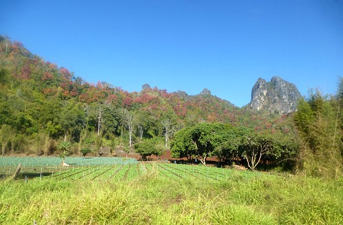 TH-Chiang Dao-Fang-Route (41)