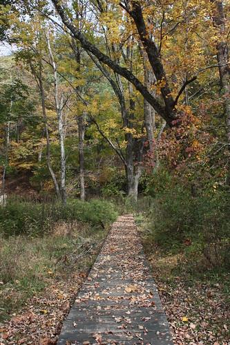 Entrance to Beard's Gap Trail
