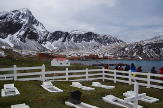 397 Grytviken