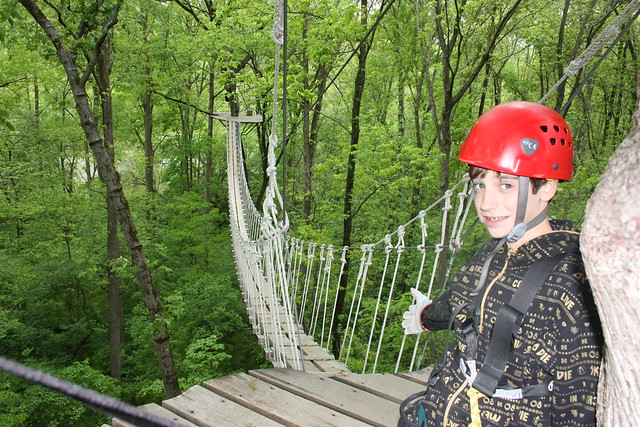 Zipline tours are a great way to explore nature and the outdoors