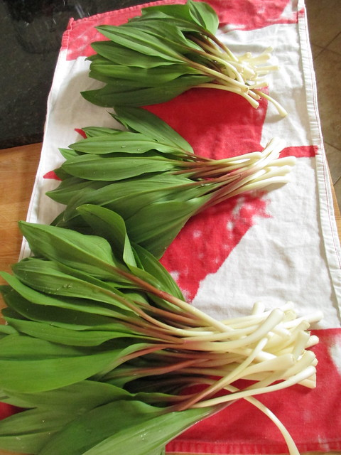 Ramps, washed.