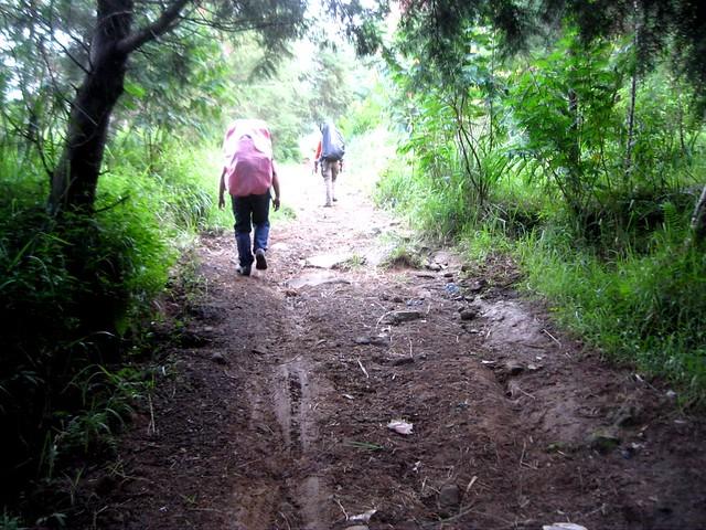 Track Gunung Sindoro