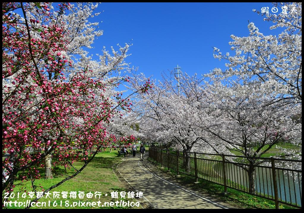2014京都大阪賞櫻自由行.鶴見綠地DSC_1264