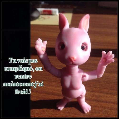 [ minipin et cojoo hujoo] Carpette et machine 16385243470_35995908bf